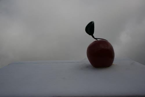 Uma Cereja no telhado