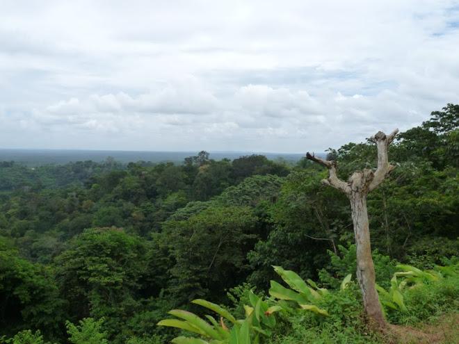 Village Hmong de Cacao