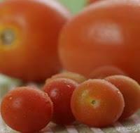 buah tomat, kesehatan, jerawat