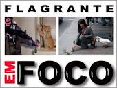 FLAGRANTES EM FOCO