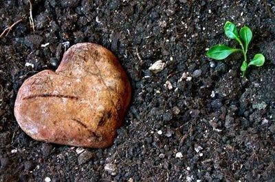 Tamar (4/4 Corazón Encontrado)