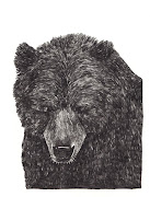 I will be making these bear drawings into a little book soon.