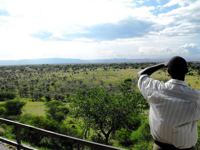 15 Decembre - Le Ranch de Manyara