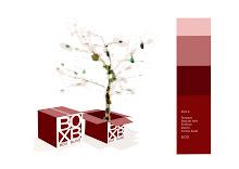 Box b Circuito Creativo