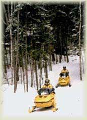 Minnesota Winter Cabin Rentals Snowmobile Rentals And
