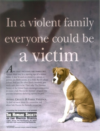 domestic animal abuse essay Research paper animal abuse: animal abuse and domestic violence often occur in tandem, demonstrating that in seventy percent of the cases in which women.
