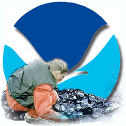Natural Resource Damage Assessment Regulations