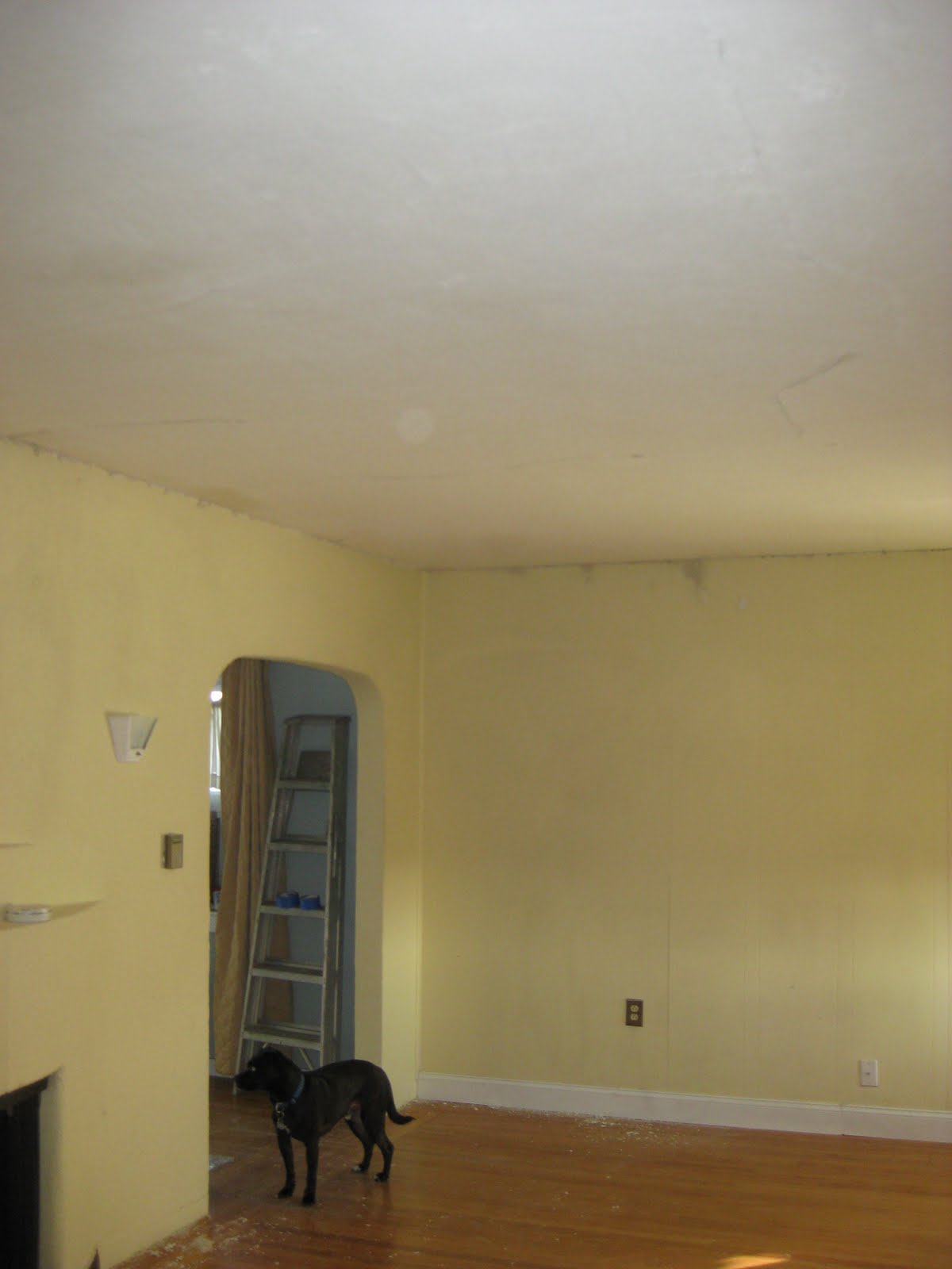 Home Depot Behr Paint Prices Home Painting Ideas