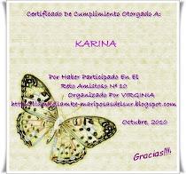 Certificado RETO AMISTOSO Nº 10