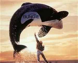 Free Bungie
