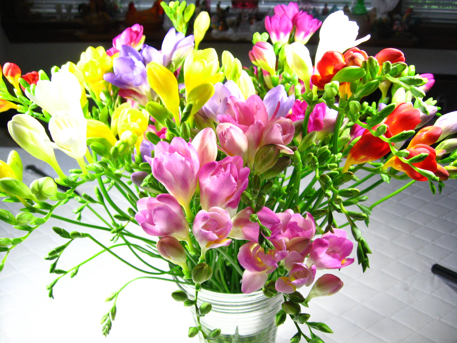 Gracie Jewellery Happy New Year Pink Saturday Jan 1 2011