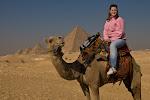 Såg pyramiderna med kamel 2007