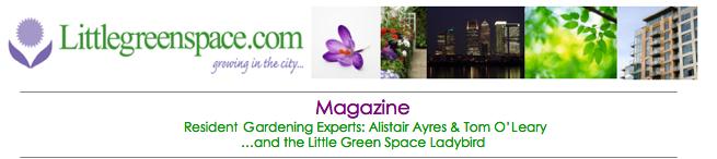 Little Green Space - Magazine