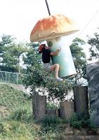 MXC mushroom challenge