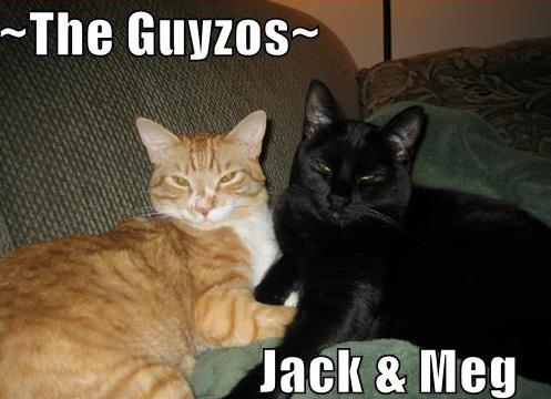 ~The Guyzos~