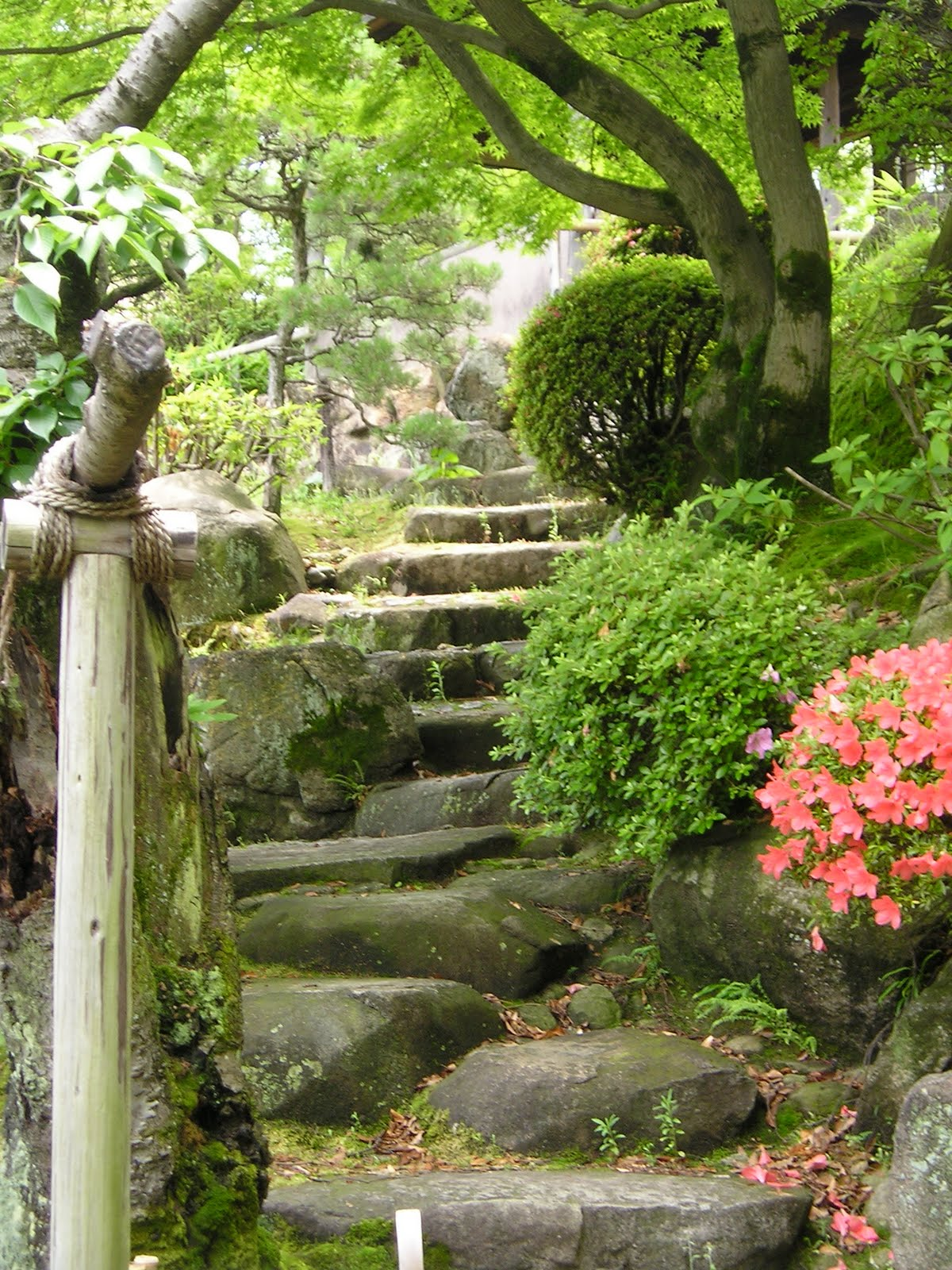 The quest for all knowledge japan has pretty gardens for A japanese garden