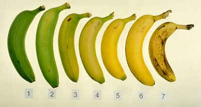 [banana_ripeningchart.jpg]