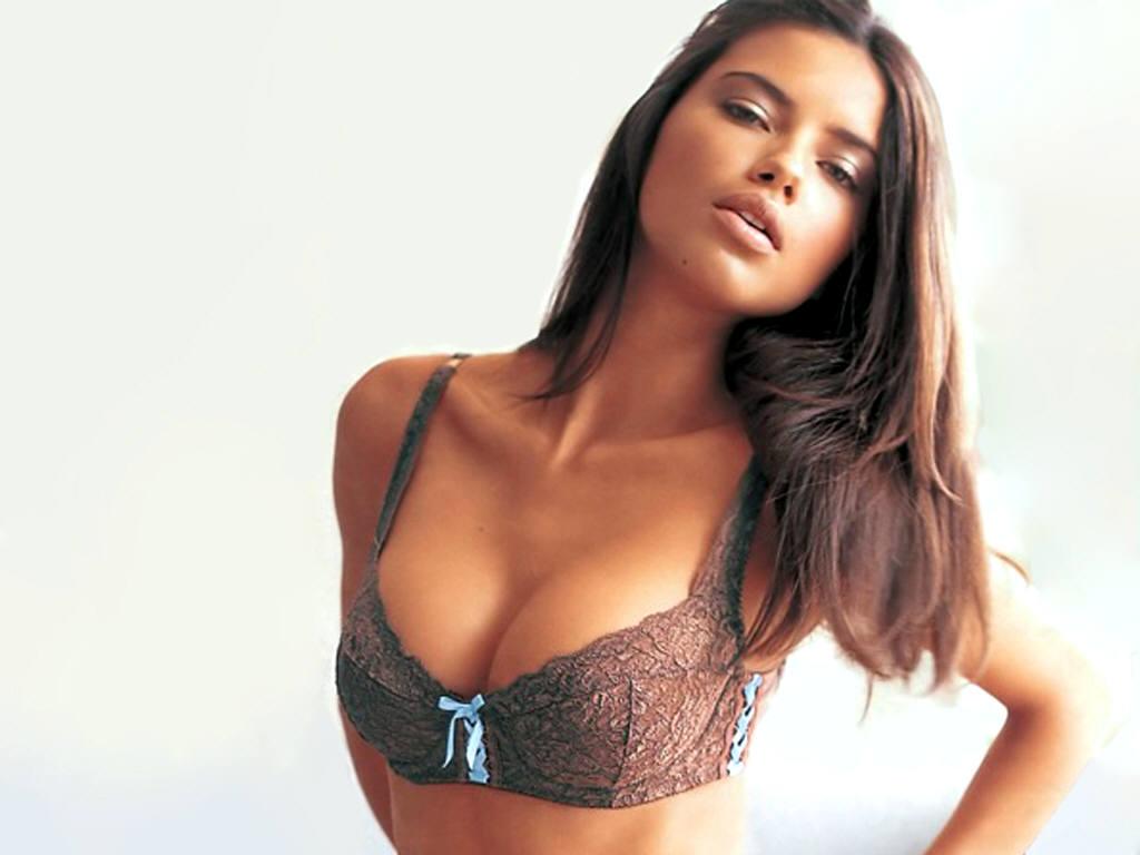http://4.bp.blogspot.com/_1xAh8hxNSlQ/S89ybmYELjI/AAAAAAAAAp4/9Uo31ua6KaA/s1600/Adriana-Lima-25.JPG