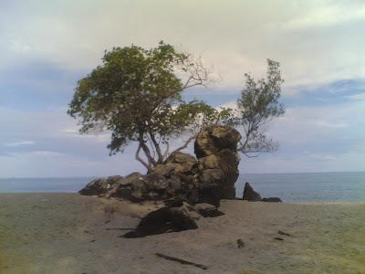 dabo singkep wisata alam pantai batu berdaun 2