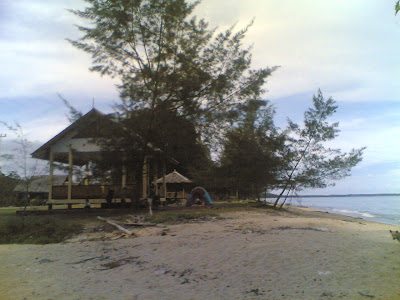 dabo singkep wisata alam pantai batu berdaun 4