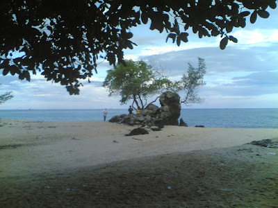 dabo singkep wisata alam pantai batu berdaun 6