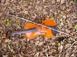 Le violon de Bastien