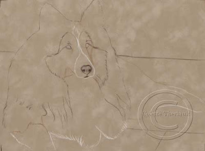 Step one- line drawing of dog