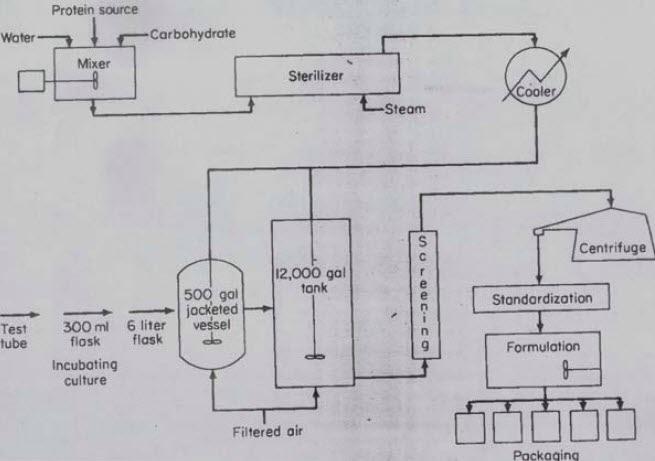 avibert  bioinsecticidas microbiolog u00eda industrial hector