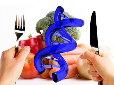http://4.bp.blogspot.com/_203XvOxWDso/Sa58jf6WeVI/AAAAAAAAAys/OQbeswOCHRY/s400/bien-verde-riesgos-beneficios-alimentos-transgenicos-460x345-la%5B1%5D.JPG