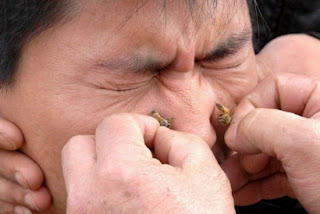 Лечение Ринита пчелиным ядом