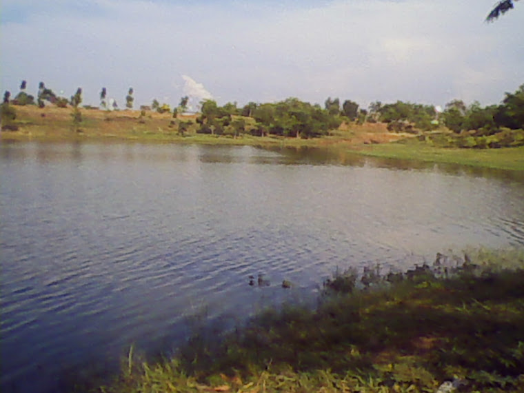 Other View of Telaga sari