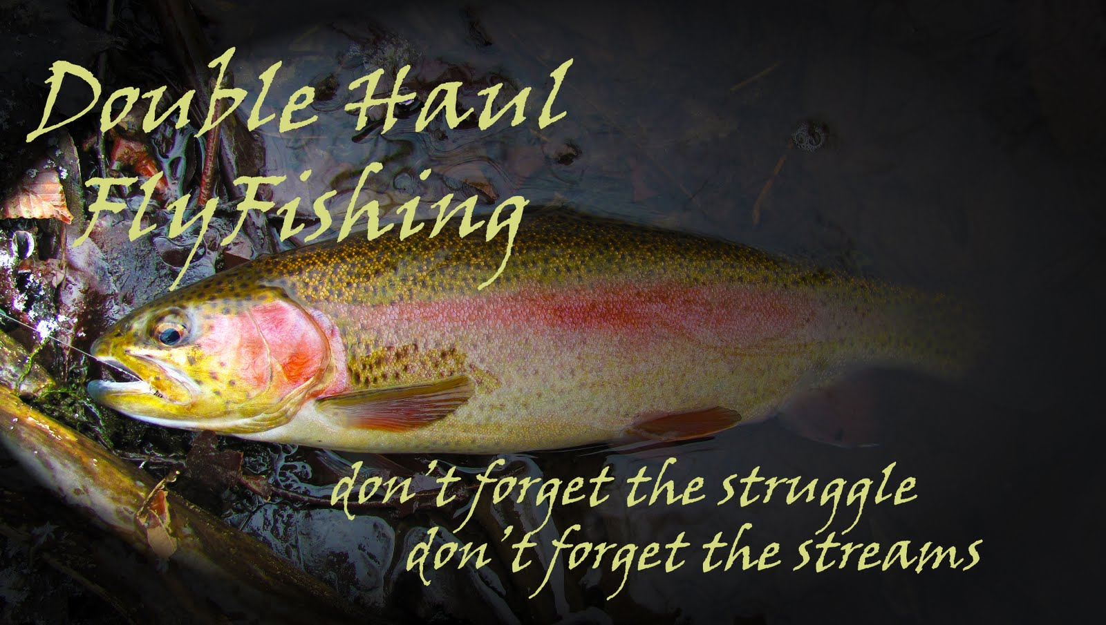 Double Haul Flyfishing