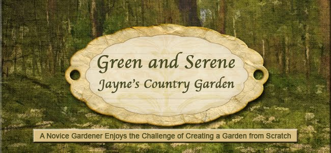 Green and Serene - Jayne&#39;s Country Garden
