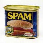 I love SPAM .. the FOOD