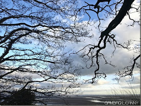 Swansea BaY, WaLes