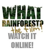 Taib Mahmud, Where Have Our Rainforest$ Gone?