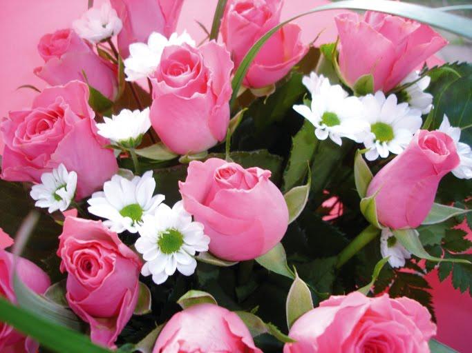 fresh flowers delivery wedding flowers decoration fresh pink roses flowers. Black Bedroom Furniture Sets. Home Design Ideas