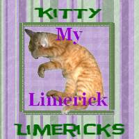 Kitty Limericks
