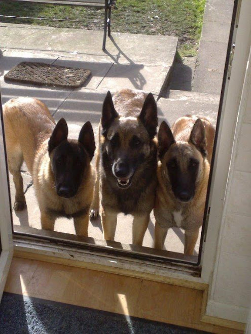 Can we come in mummy? Please.
