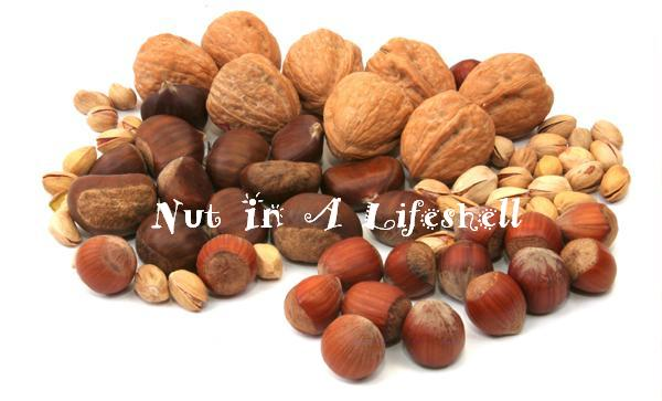 Nut in A Lifeshell