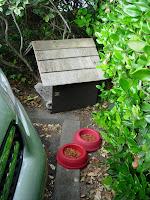 Monterey Hyatt Cat Bowls