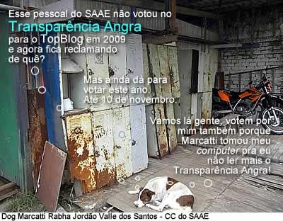 Dog Marcatti Rabha Jordão Valle dos Santos