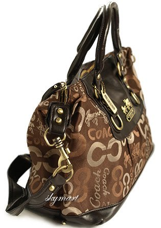 Fabulosity on Earth  High Quality Replica Coach Tote Bags 8a39c7e888861