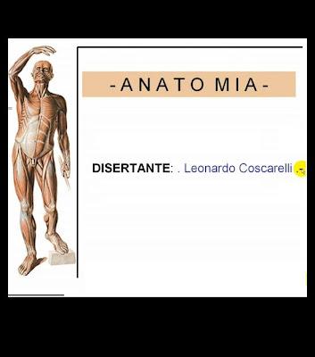 videos de anatomia humana de leonardo coscarelli en español