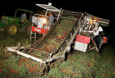 how to make crushed tomatoess