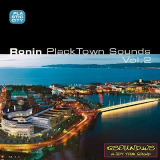 Ronin :: Placktown Sounds Vol. 2