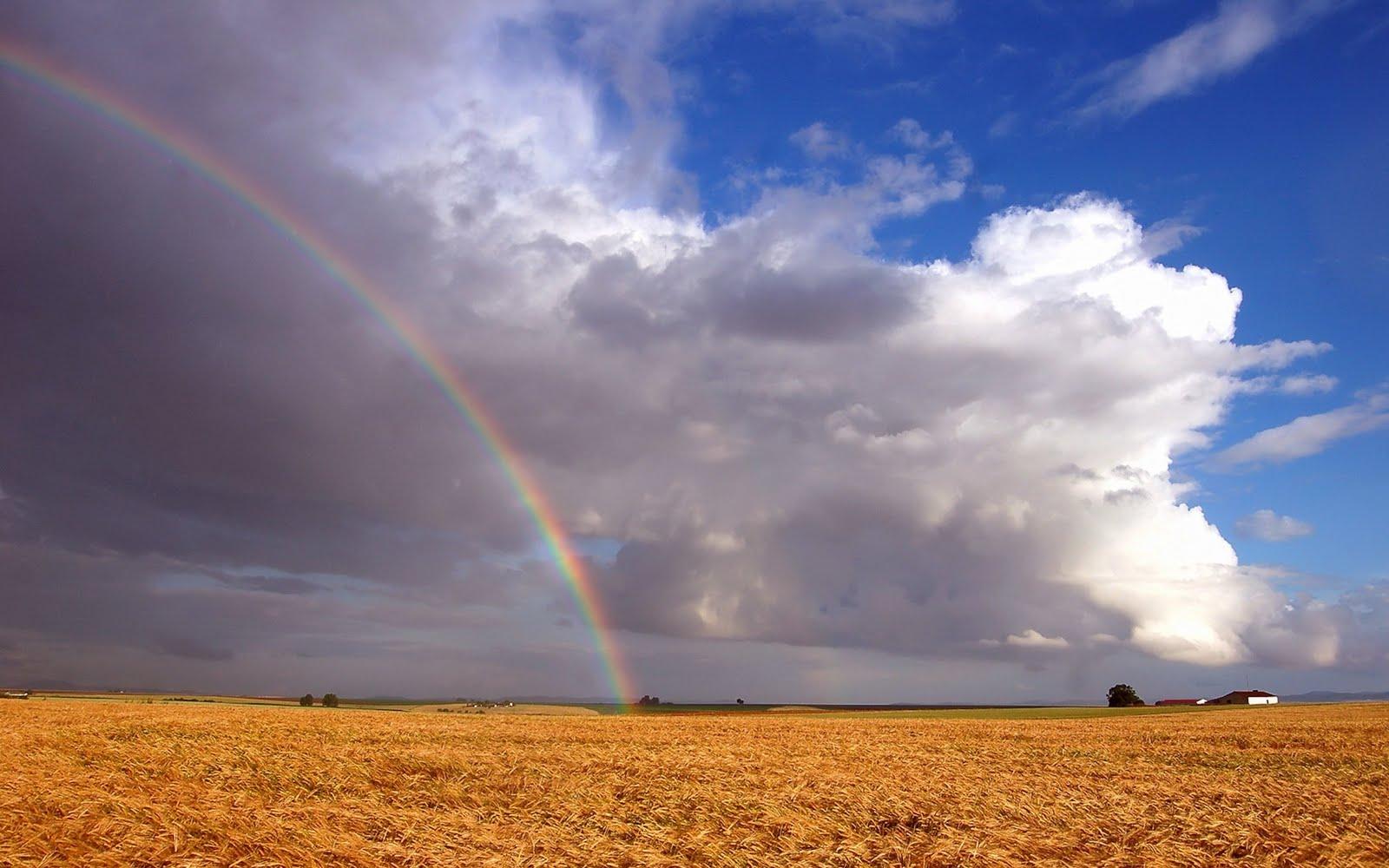 http://4.bp.blogspot.com/_2IU2Nt4rD1k/TDorLev2SDI/AAAAAAAAB3U/8qBGL2KROI4/s1600/rainbow_wallpaper.jpg
