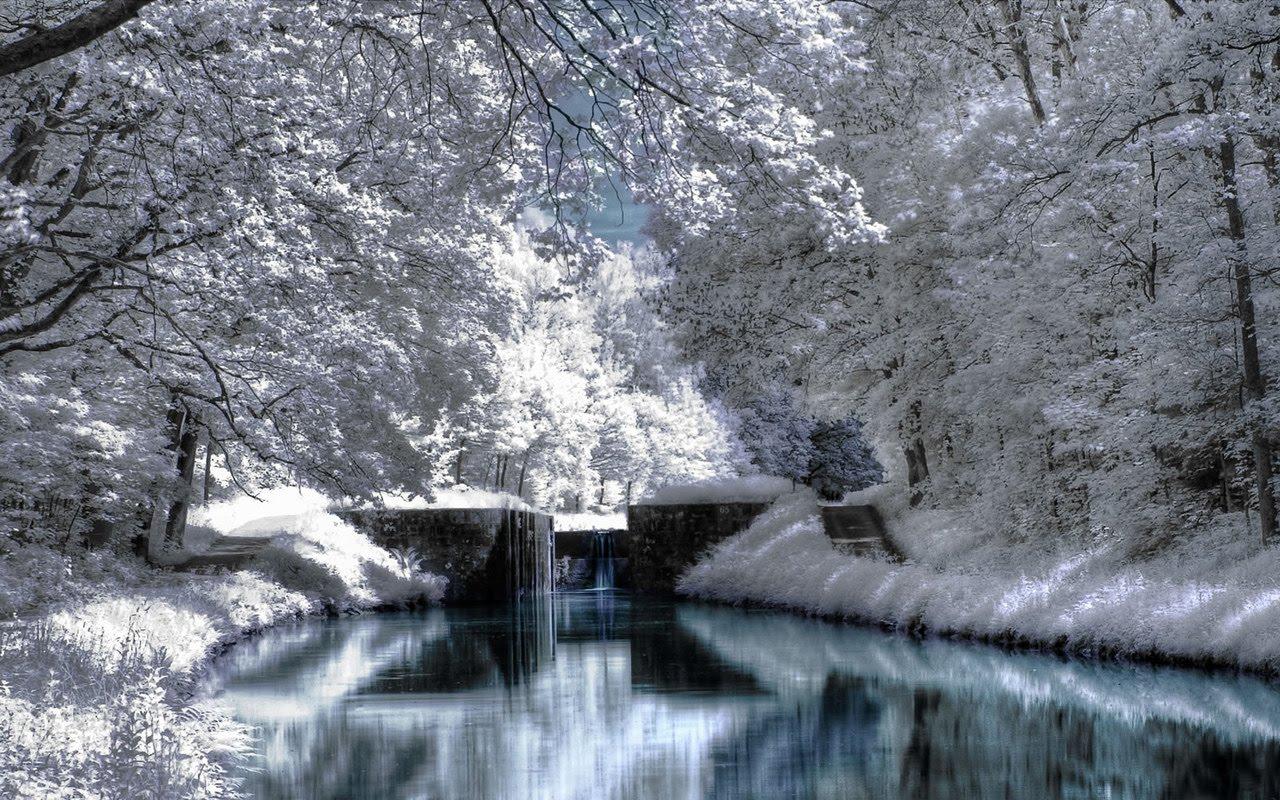 winter season winter scenery hd wallpaper