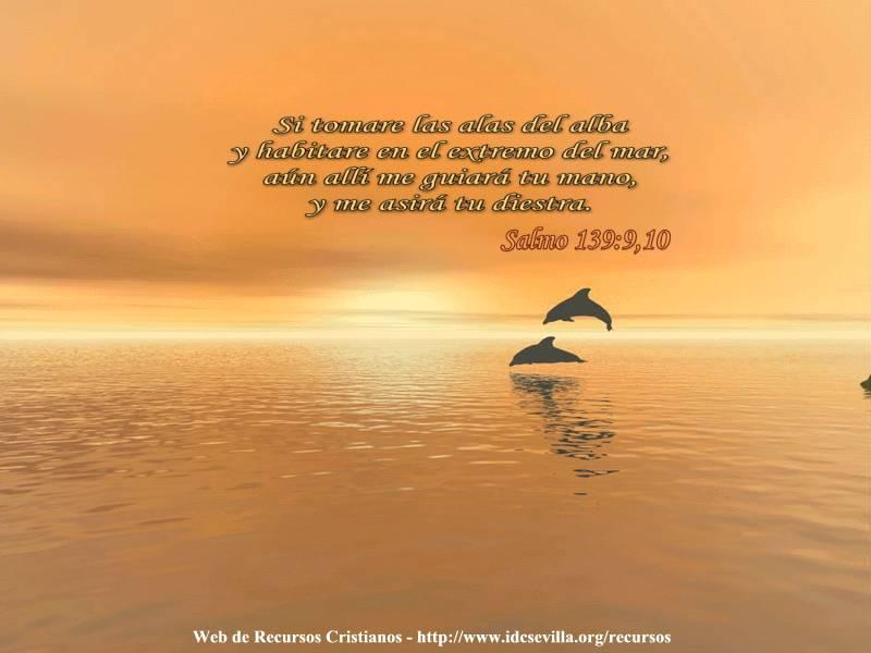 Salmo 139 Biblia Catolica