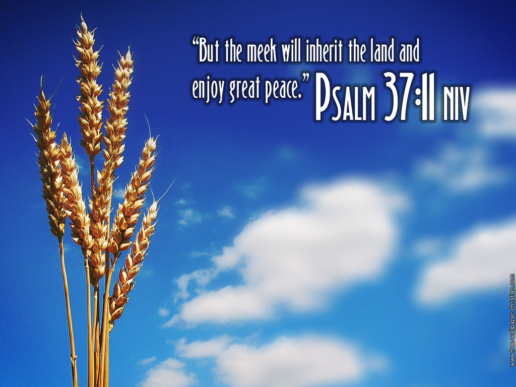 christian wallpaper psalms -#main